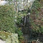 鳥取市I様邸-ガーデン管理
