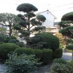 鳥取市O様邸-素晴らしい植木達に感激