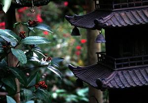 庭園管理・剪定・造園土木工事/ビオトープガーデン鳥取